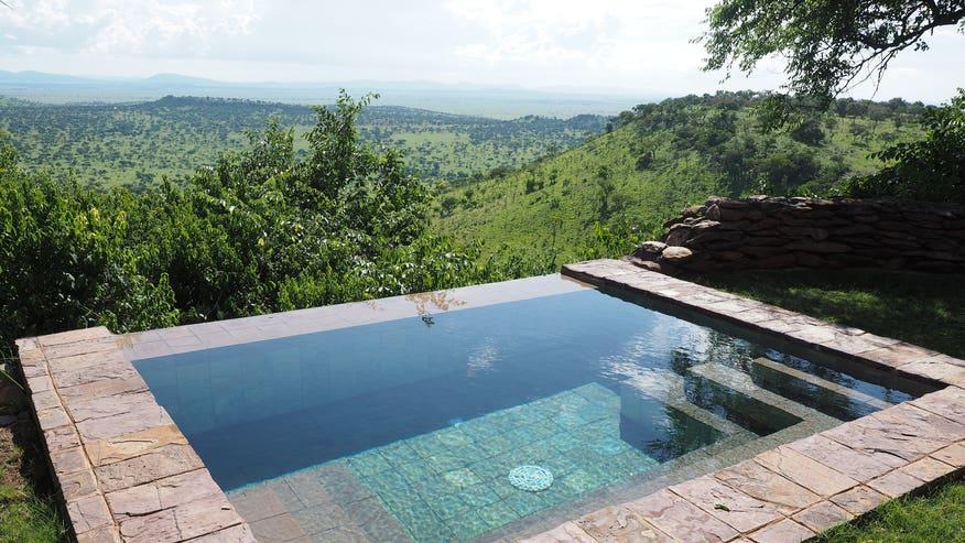 safari_pool.jpg
