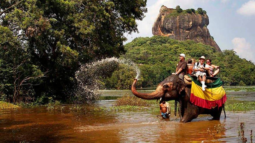 srilankaelephant.JPG