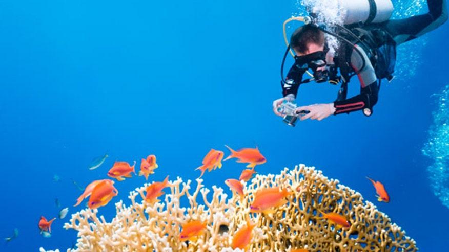 underwater_photog.jpg