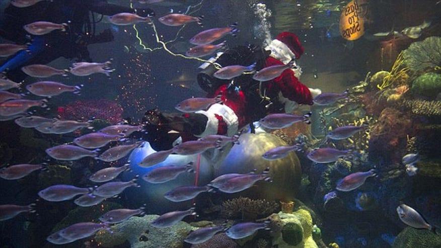 underwater_santa6.jpg
