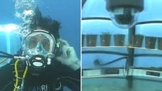 A group of divers are leading a new venture to test whether farming underwater could be a viable alternative in tough weather conditions.