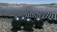 LA's scheme to cover a reservoir under  million shade balls may not be all it is touted to be, experts told FoxNews.com, with some critics going so far as to refer to the plan as a potential disaster.