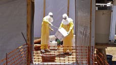At least eight Ebola aid workers and journalists were reportedly murdered and dumped in a latrine in a remote village in Guinea in a frightening example of the growing distrust locals have of foreigners coming to help stem the mushrooming health crisis.