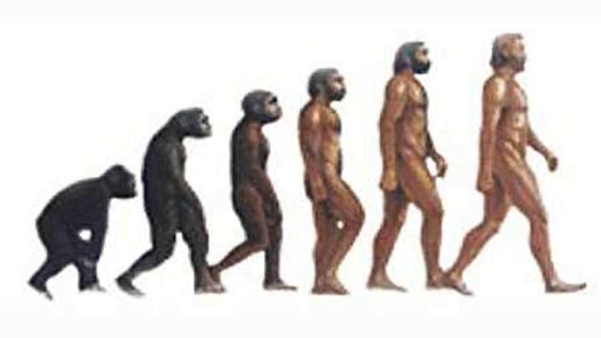 Evolution of man short essays