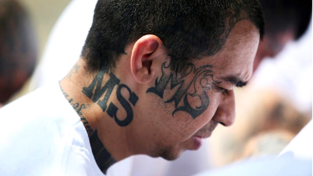 Peaceful burbs struggle as MS-13's bloody brutality seeps onto leafy streets