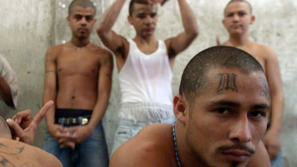 MS-13 exports new wave of thugs amid Trump administration crackdown