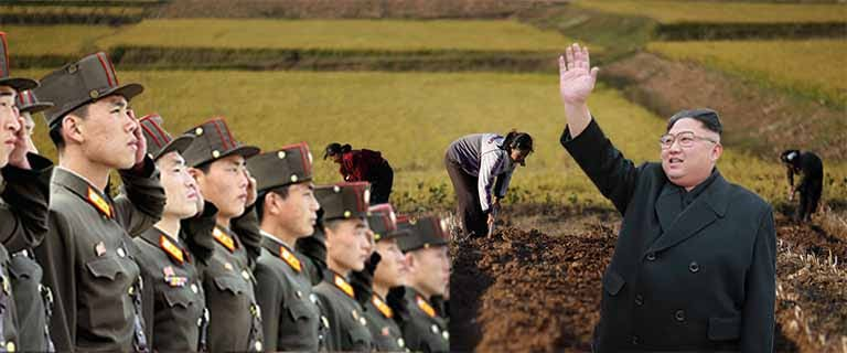 Well-fed Kim sends thugs to steal farmers' food for his starving North Korean army