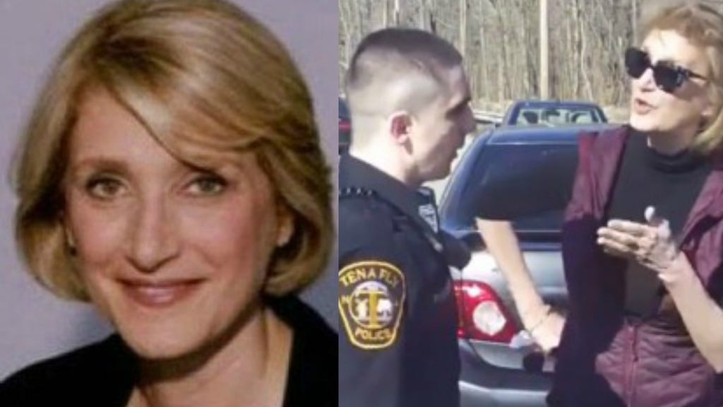 Video shows ex-Clinton aide in profanity-laced standoff with cops