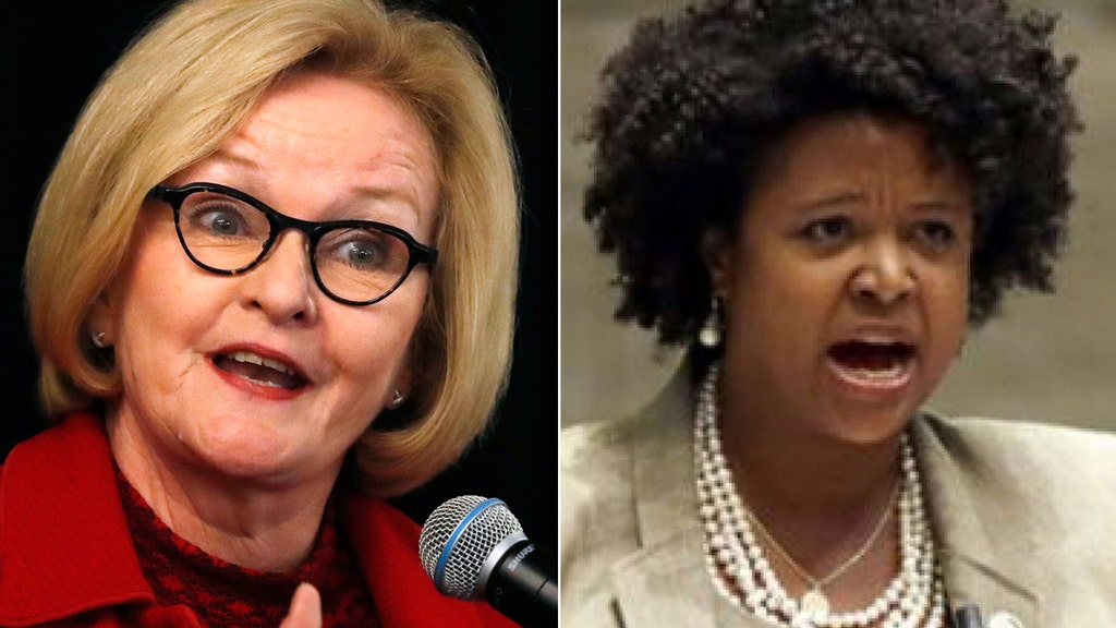 Dem bashes McCaskill in profanity-laced attack for 'crazy Democrats' comment
