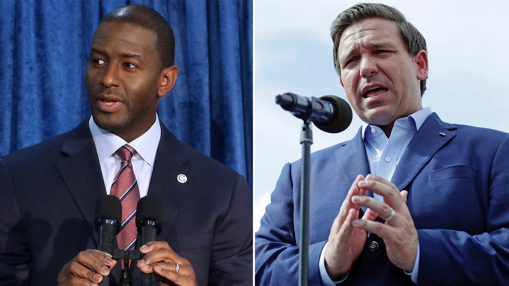 Democrat Gillum concedes to GOP's DeSantis in Florida governor's race