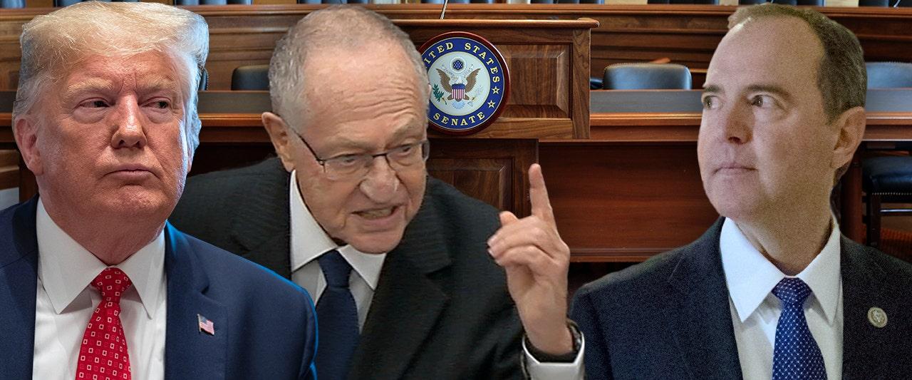 Trump defense team member says House chose 'most dangerous possible criteria' for impeachment