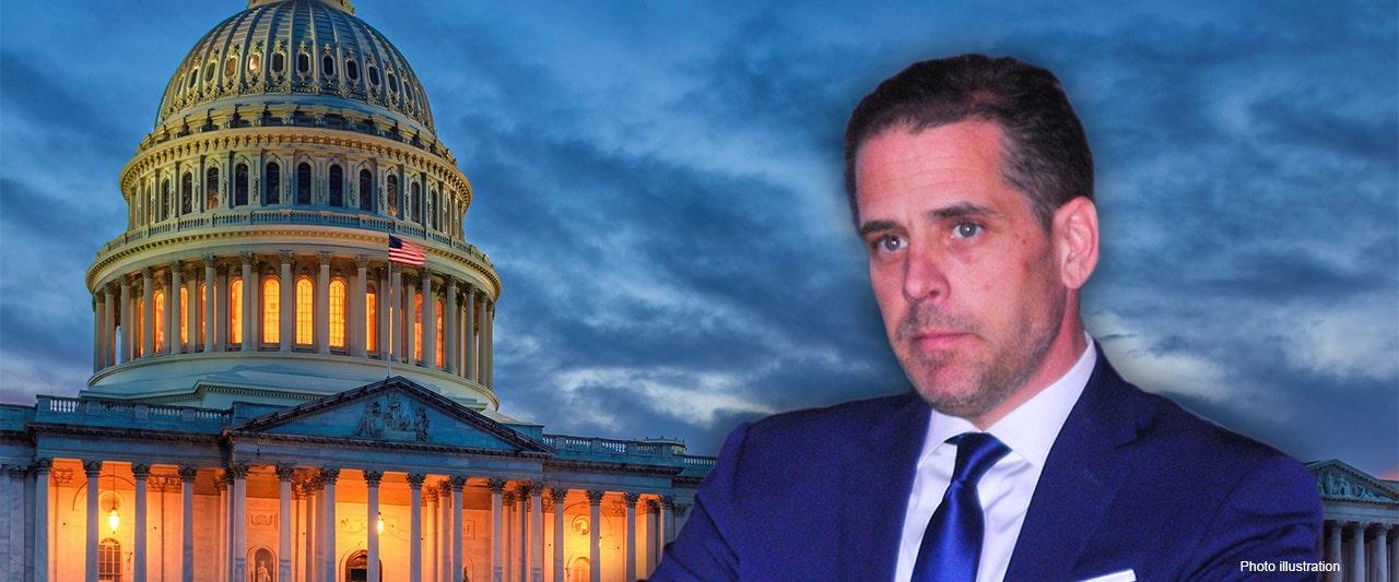Senate probing newly emerged emails, purport to show Hunter Biden linking VP dad to Ukraine exec