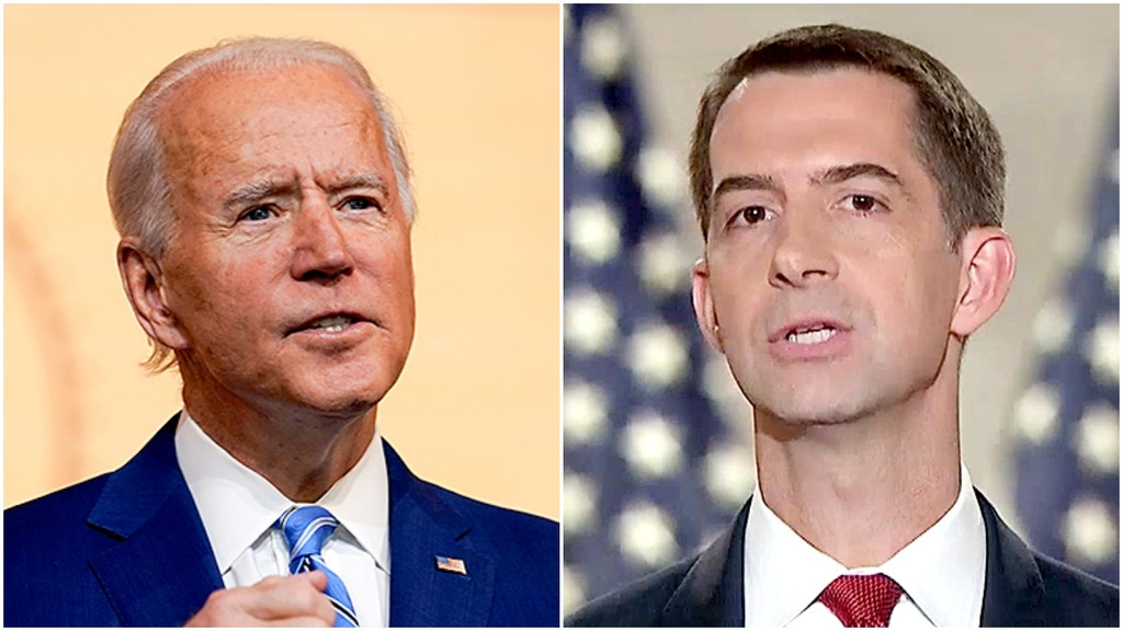 Cotton blasts Biden's picks to lead foreign policy, national security teams
