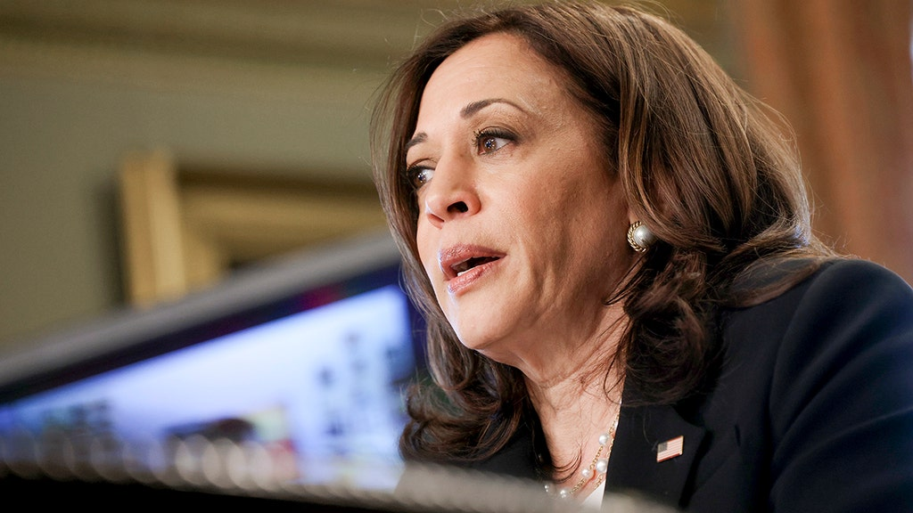 VP Harris appears to break ethics pledge by hiding private assets from public