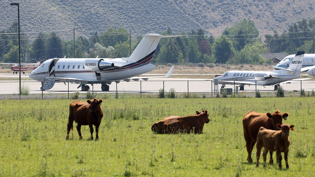 Billionaires in private jets preaching climate change force air traffic backup