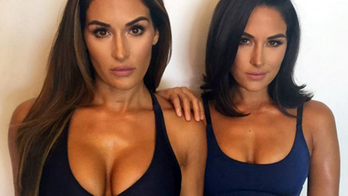 tmz use only bella twins