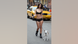 Emily walks dog in lingerie