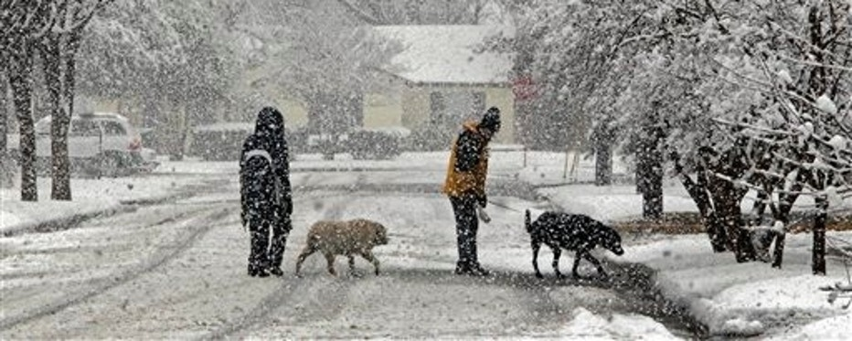 Nora Tay, left, with Dylan, and Richard Haas, with Zeus, take a walk in the snow near the Southern Methodist University campus in Dallas, Thursday, Feb. 11, 2010. Snow blanketed parts of Texas as a winter storm slowed traffic, interrupted classes and forced the cancellation of hundreds of flights. (AP Photo/The Dallas Morning News, Louis DeLuca) NO SALES, MAGS OUT, TV OUT, INTERNET: AP MEMBERS ONLY