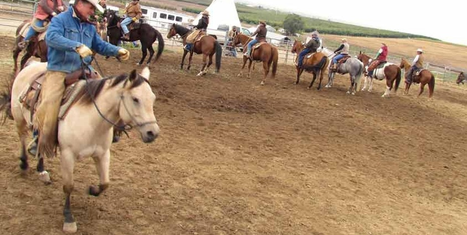 Cherrywood offers horseback rides for those visiting their luxury campsite.