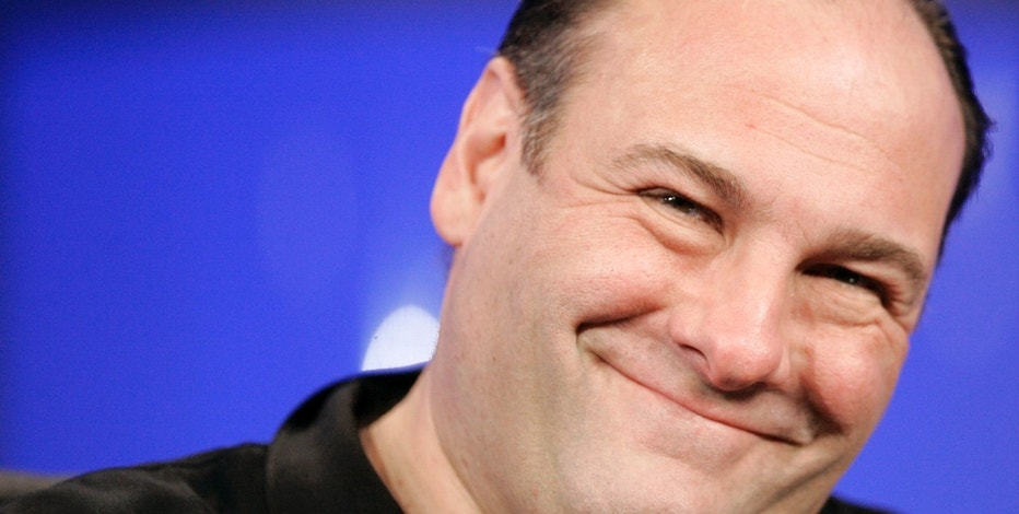 "Actor James Gandolfini smiles during a panel discussion for the television show ""The Sopranos"" at the ""Television Critics Association"" media tour in Pasadena, California January 13, 2006. The HBO television show enters its sixth and final season on March 12. REUTERS/Mario Anzuoni - RTR185JD"