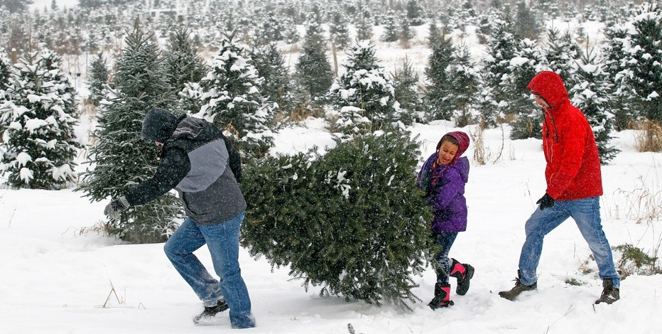 Brett Spangler (L) and Brandon Politte (R) carry a Christmas tree to their car with Politte's niece Kiley Gay (C) at the Rum River Tree Farm in Anoka, Minnesota, December 8, 2013. A massive winter storm that left parts of Southeastern United States in a deep freeze was pushing up the East Coast on Sunday, with snow and ice snarling road travel and forcing another round of airline cancellations. Marching north, it was expected to pummel the East Coast with snow, sleet, and freezing rain from Baltimore to north of Portland, Maine, according to the National Weather Service.  REUTERS/Eric Miller (UNITED STATES - Tags: ENVIRONMENT) - RTX16AKC