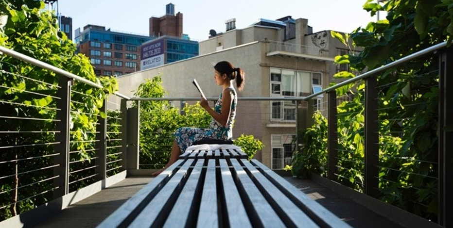 A woman uses the late afternoon sun to read while sitting on the High Line park in New York, June 12, 2013. New York City has a wild side and it has nothing to do with its honking yellow taxis, towering skyscrapers and celebrity-studded nightclub crowds. Picture taken June 12, 2013. To match story TRAVEL-NEWYORKCITY/NATURE      REUTERS/Lucas Jackson (UNITED STATES - Tags: CITYSCAPE TRAVEL SOCIETY) - RTX10NCQ