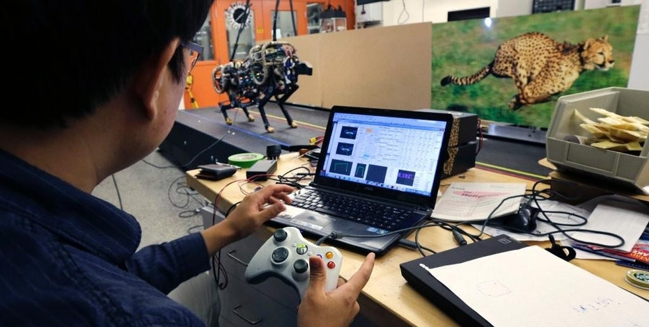 In this Sept. 30, 2014 photo, researcher Hae Won Park works on the software for a robotic cheetah with a game controller at the Massachusetts Institute of Technology in Cambridge, Mass.  MIT scientists said the robot, modeled after the fastest land animal, may have real-world applications, including for prosthetic legs. (AP Photo/Charles Krupa)