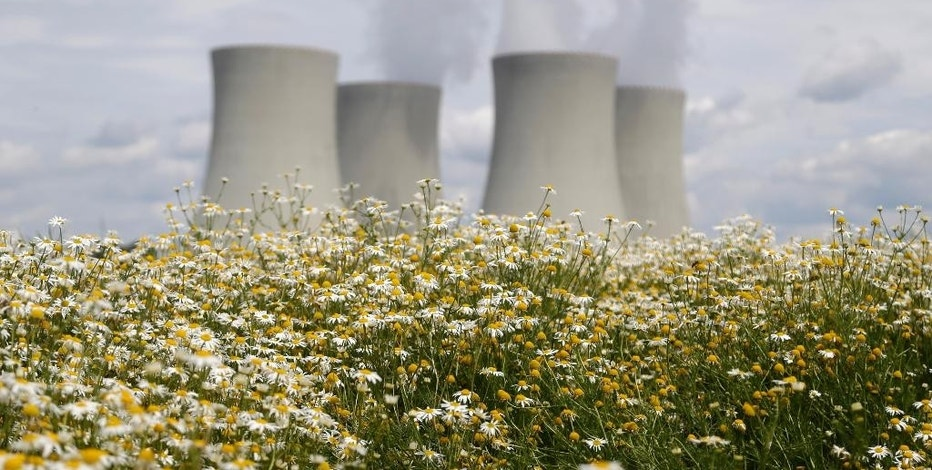 In this picture taken on Thursday, June 25, 2015, smoke rises from cooling towers of the nuclear power plant Temelin near the town of Tyn nad Vltavou, Czech Republic. The Czech government's decision last month to launch a vast, long-term expansion of nuclear power production has deepened a divide. Part of the plan is to build a new nuclear reactor near the border with Austria, outraging the wealthier Alpine nation. (AP Photo/Petr David Josek)