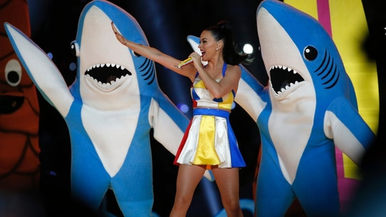 Unforgettable Super Bowl Halftime Moments
