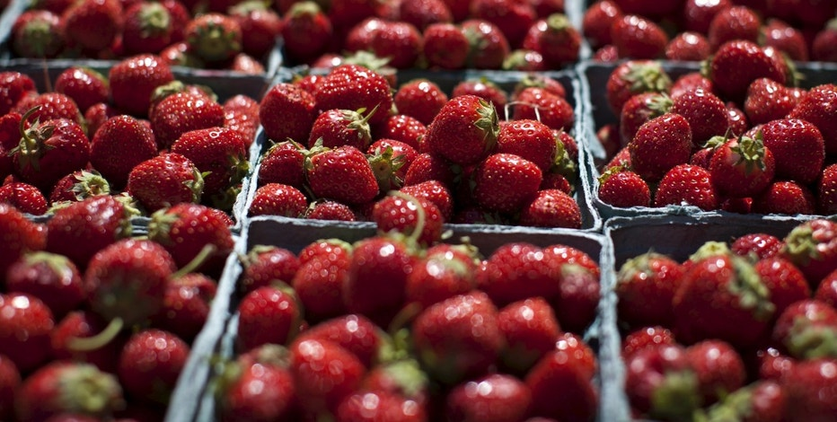 Boxes of fresh strawberries for sale sit in the summer sun at a farmers' market in Hoboken, New Jersey