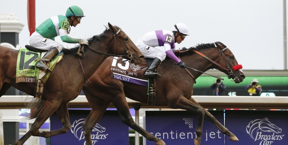 In this Oct. 31, 2015, file photo, Nyquist (13), with Mario Gutierrez up, wins the Breeders' Cup Juvenile horse race at Keeneland in Lexington, Ky. Unlike Pharoah-phever a year ago, Nyquist-mania hasn't yet struck in the days leading to the Kentucky Derby. It might by next Saturday night if the undefeated colt ends up in the winner's circle at Churchill Downs.