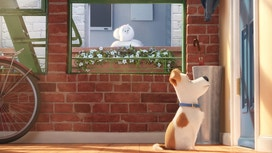Pet Retailers Cashing In On 'The Secret Life of Pets'