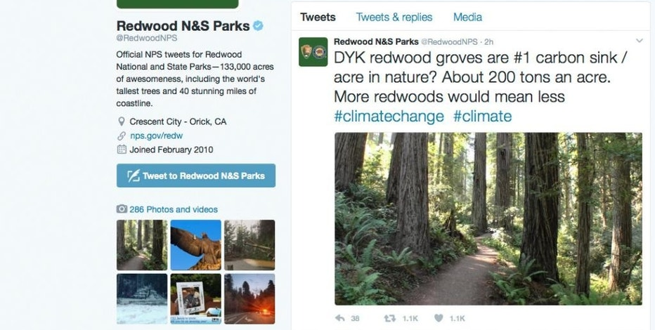 This photo shows a Twitter post from the National Park Service's Redwoods National Park account, noting that redwood groves are nature's No. 1 carbon sink, which capture greenhouse gas emissions that contribute to global warming  Legal experts say the Justice Department could prosecute tweets from federal agency accounts by unauthorized users under federal hacking laws. Some say that even employees authorized to use official agency Twitter accounts could face legal jeopardy posting messages they weren't supposed to write. (National Park Service via AP)