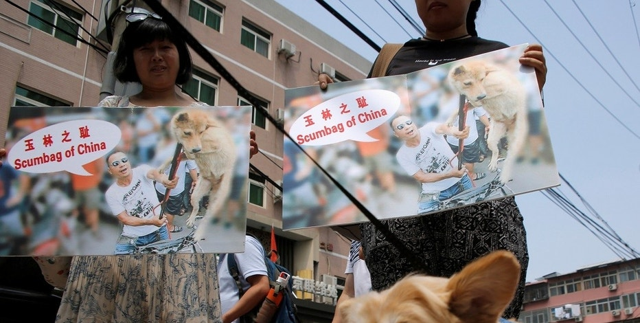 Animal activists hold banners against Yulin Dog Meat Festival as they carry rescued stray dogs in front of Yulin City Representative office in Beijing, China, June 10, 2016.   REUTERS/Kim Kyung-Hoon - RTSGU7P