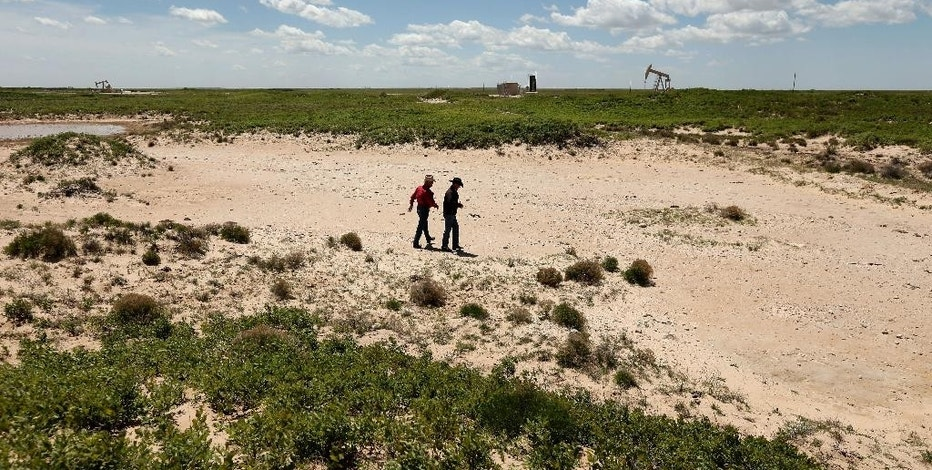 In this April 24, 2015 photo, Carl Johnson, left, and his son, Justin, walk across a stretch of pasture left barren after an oilfield wastewater spill on their ranch near Crossroads, N.M. The ranchers have been fighting oil companies for decades over spills of briny, polluted water. (AP Photo/Charlie Riedel)