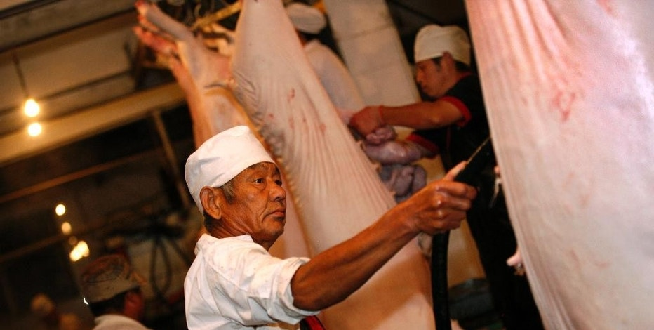 Workers cut pork at a slaughterhouse in Huaibei in central China's Anhui province Thursday, Sept. 10, 2015. China's consumer inflation edged up in August to 2 percent, driven by higher costs for pork and fresh vegetables. (Chinatopix via AP) CHINA OUT