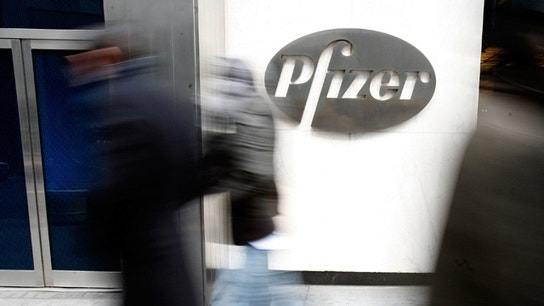 Pfizer Outlines Post-Merger Management Slate