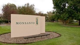 Bayer Makes Takeover Approach to Monsanto