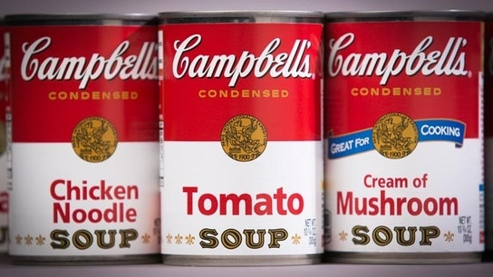 campbell soup profit analysis • campbell soup company is a global manufacturer and marketer of high-quality foods and simple meals, including soups and sauces, snacks, and healthy beverages • their products are sold in more than 100 countries in regions north america, latin america, asia pacific, europe, middle east and africa.