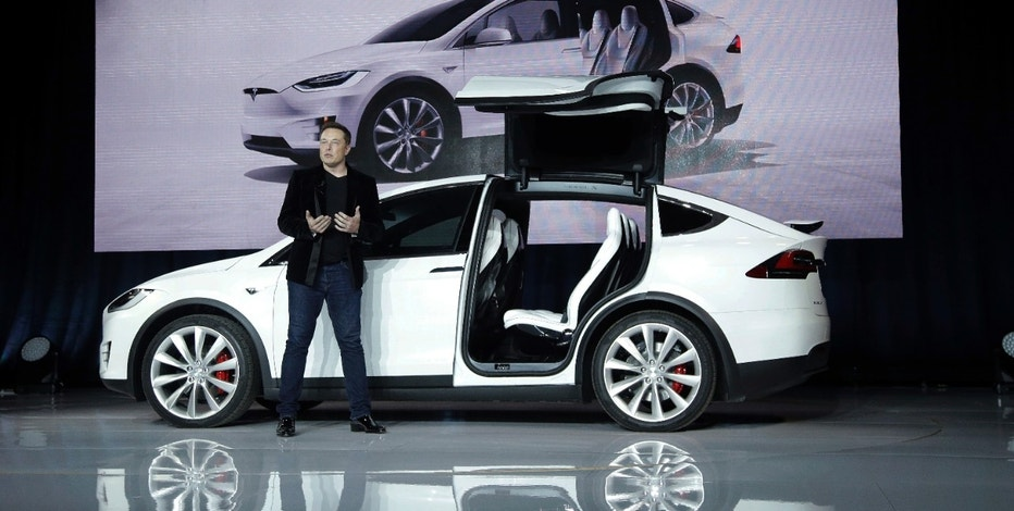 Tesla Model X and CEO Elon Musk FBN