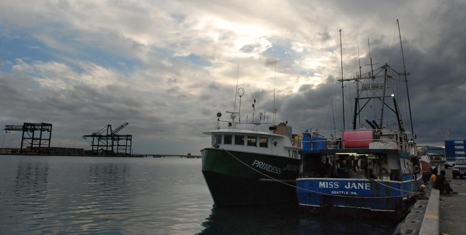 """In this May 13, 2016 photo, U.S. fishing boats that are crewed by undocumented foreign fisherman are docked at Pier 38 in Honolulu. In Hawaii, federal contractors paid to monitor catches said they are troubled by what they've seen while living weeks at a time at sea with the men. """"You get that sort of feeling that it's like gaming the system,"""" said Forest O'Neill, who coordinates the boat observers in Honolulu. """"It's a shock. It becomes normal, but it's like, 'How is this even legal? How is this possible?' ... They are like floating prisons."""" (AP Photo/Caleb Jones)"""
