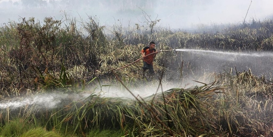 FILE - In this Thursday, Sept. 17, 2015 file photo, a fireman sprays water to extinguish wildfire on a peatland field in Ogan Ilir, South Sumatra, Indonesia. Indonesian forest fires that choked a swath of Southeast Asia with a smoky haze for weeks in 2015 may have caused more than 100,000 premature deaths, according to new research that will add to pressure on Indonesia's government to tackle the annual crisis. (AP Photo/Tatan Syuflana, File)