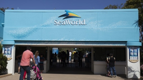 Glass Lewis & Co founder takes stake in struggling SeaWorld