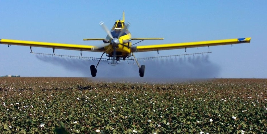 FILE - In this Sept. 25, 2001 file photo, a crop dusting plane from Blair Air Service dusts cotton crops in Lemoore, Calif. California will tighten rules on how much farmers can use a common pesticide listed by the nation's most productive agricultural state as a chemical known to cause cancer. (AP Photo/Gary Kazanjian, File)