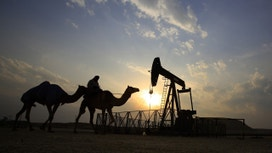 Oil Rises on OPEC Cut Comments, Draw of U.S. Crude at Cushing