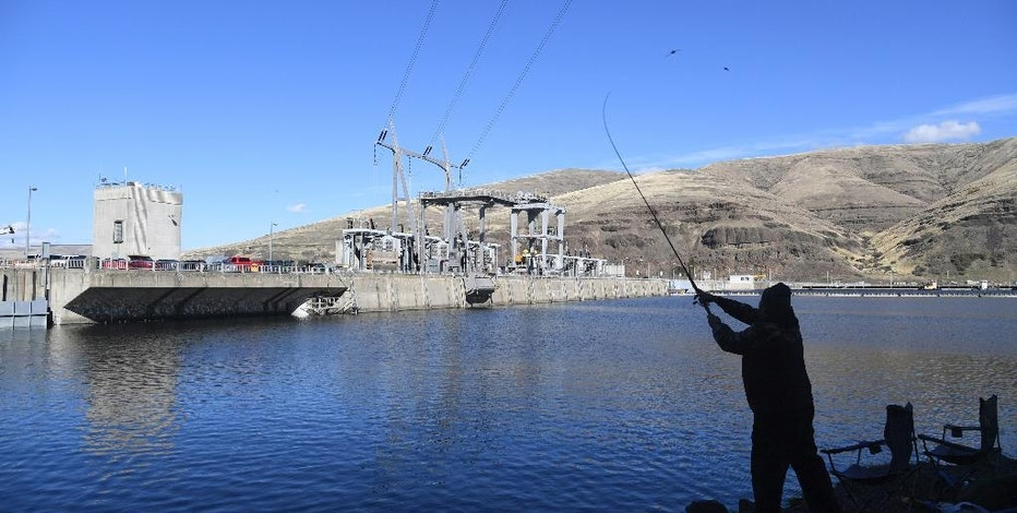 In this photo taken Oct. 19, 2016, a man fishes for salmon in the Snake River above the Lower Granite Dam in Washington state. There is a renewed push to remove the Lower Granite and multiple other dams on the Snake River to save wild salmon runs. (Jesse Tinsley/The Spokesman-Review via AP)