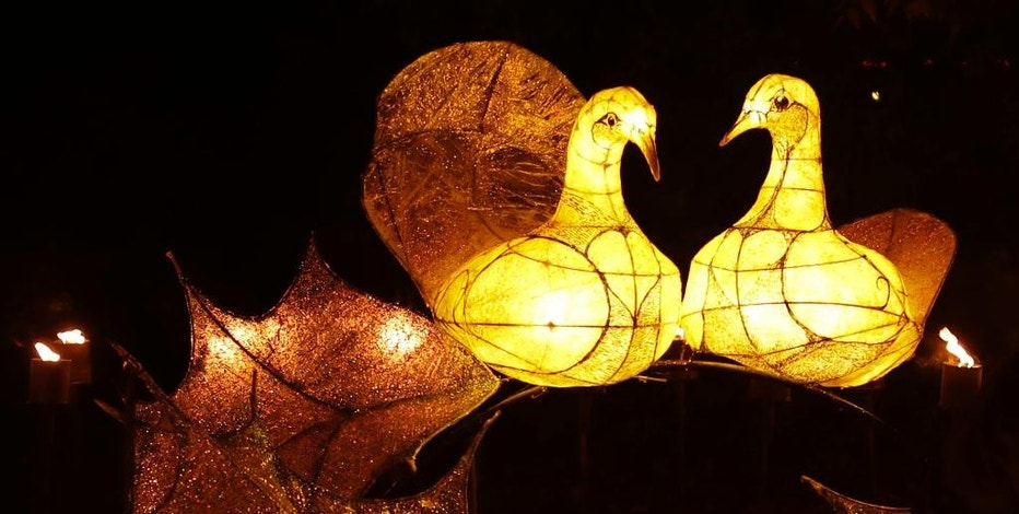 """FILE – This Nov. 22, 2016, file photo shows the """"Two Turtle Doves"""" section of a """"Fire Garden"""" display, on the eve of the public opening of the """"Christmas at Kew"""" festival at the Royal Botanic Gardens, Kew, in London. The slow recovery of the U.S. economy is keeping the cost of gifts listed in the song """"The Twelve Days of Christmas"""" from spiraling out of control, according to Pittsburgh-based PNC Financial Services Group's 33nd annual """"PNC Wealth Management Christmas Price Index"""" released Thursday, Dec. 1, 2016. (AP Photo/Matt Dunham, File)"""