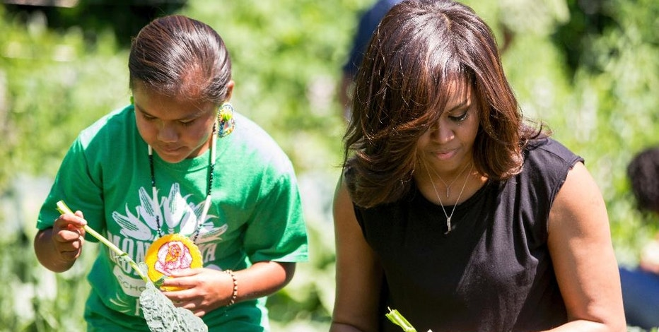 FILE - In this June June 6, 2016 file photo, first lady Michelle Obama, joined by school children from across the country, harvest the White House Kitchen Garden at the White House in Washington. What does Michelle Obama do next? After eight years as a high-profile advocate against childhood obesity, a sought-after talk show guest, a Democratic power player and a style maven, the first lady will have her pick of options when she leaves the White House next month.(AP Photo/Andrew Harnik, File)