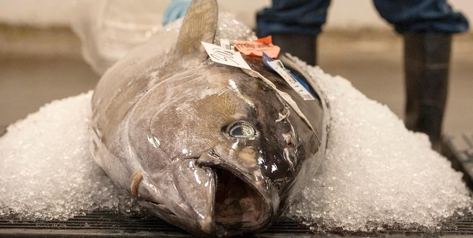 Us issuing new rules to curb illegal fishing seafood for United fishing agency