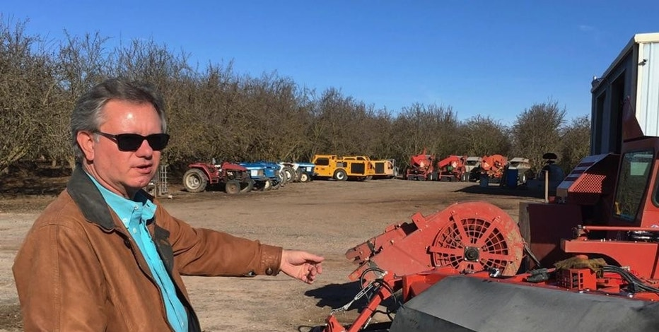 In this Dec. 27, 2016 photo, farmer Kevin Herman stands next to an almond sweeper at his ranch near Madera, Calif. Herman says that Donald Trump's campaign vow to deport millions of immigrants who are in the country illegally pushed him into buying more equipment, cutting the number of workers he'll need during the next harvest. (AP Photo/Scott Smith)